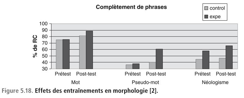 Figure 5.18. Effets des entraînements en morphologie [2].