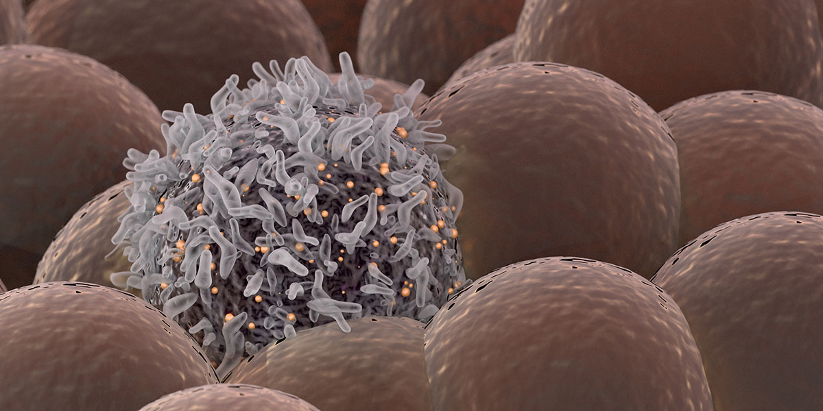 Using-cancer-to-find-tumours