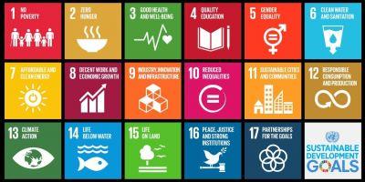 Six ways Elsevier supports sustainability