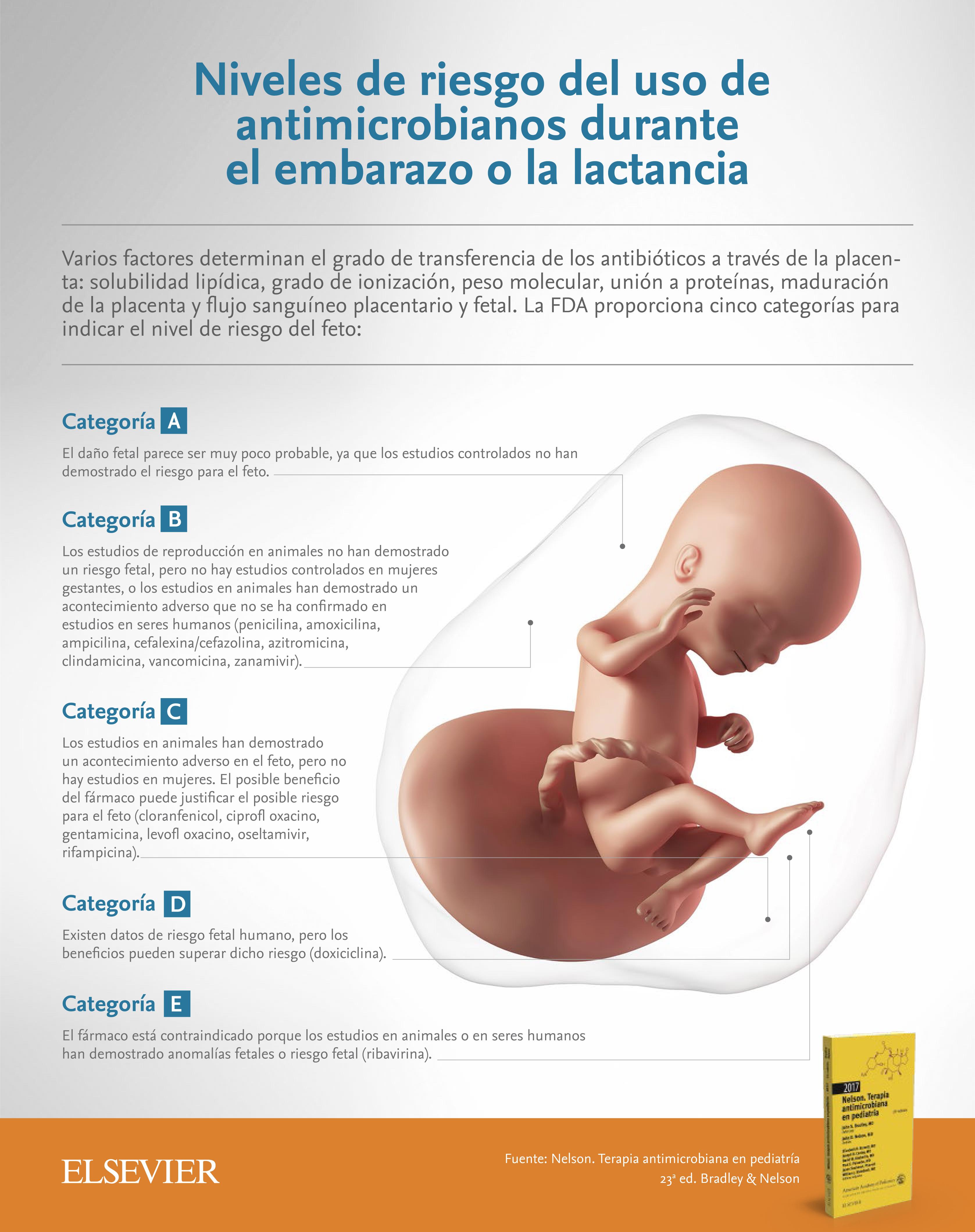 que antibioticos se puede tomar en el embarazo