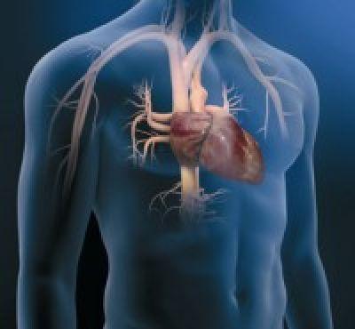 Entrevista con Dr. Douglas Mann autor principal de 'Braunwald. Tratado de Cardiología'