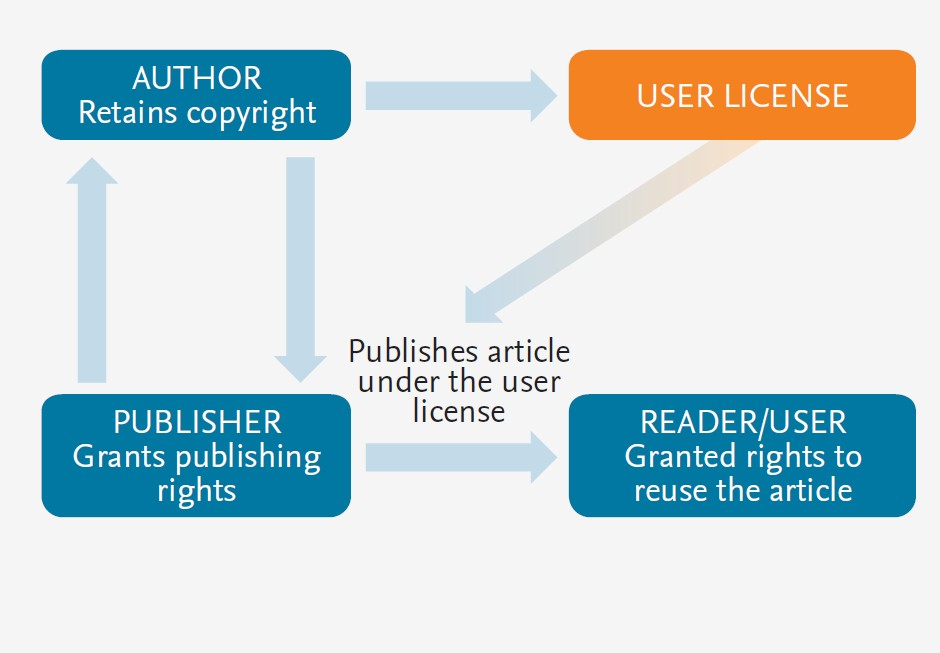 ownership and assignment of copyright