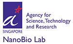 Nanobio Lab