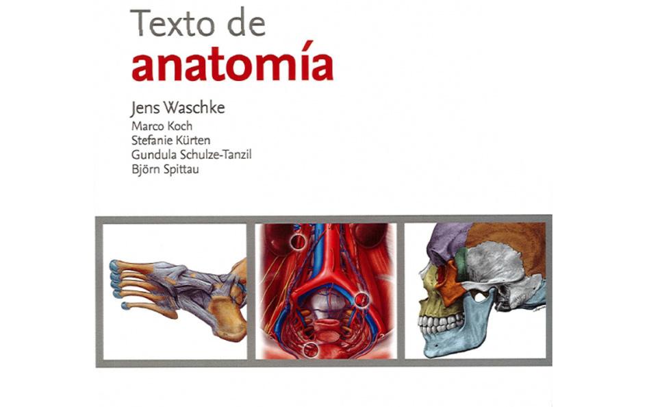 sobotta-texto-de-anatomia-Medicina.jpg
