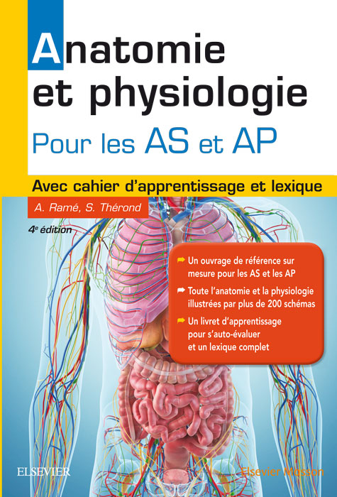 anatomie ASAP
