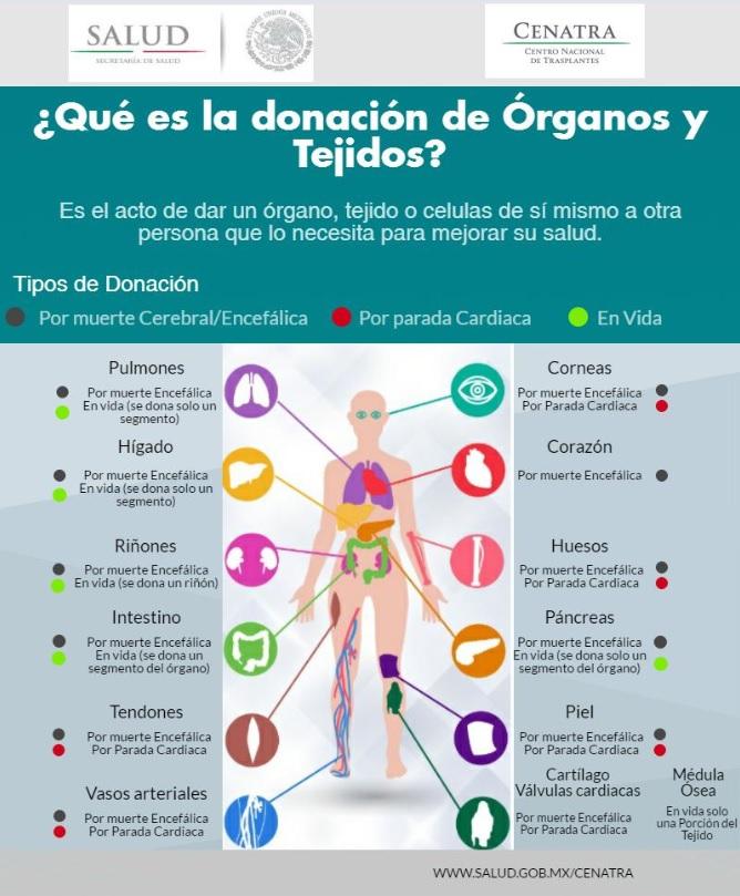 Infografía centra donzación