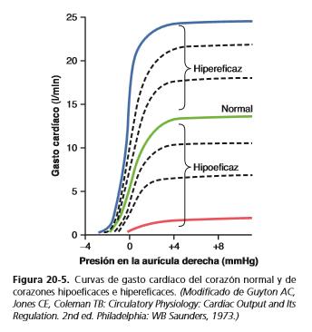 Factores que provocan un corazón hipereficaz o hipoeficaz