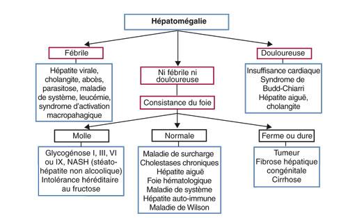 foie enfant hépatomégalie