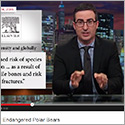 Study on threat to polar bear penises inspires media, tweets — and comic John Oliver