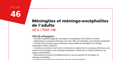 Méningites et méningo-encéphalites de l'adulte