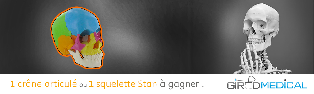jeu-Anatomie-Elsevier.jpg