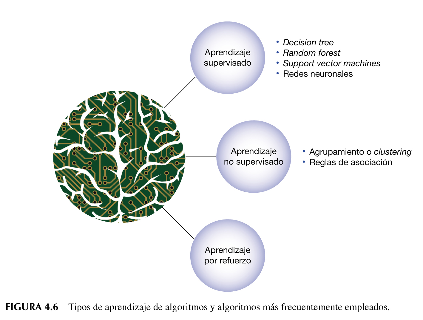 Tipos de algortimos