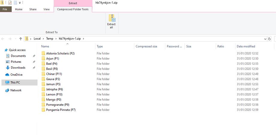 Zip file extract