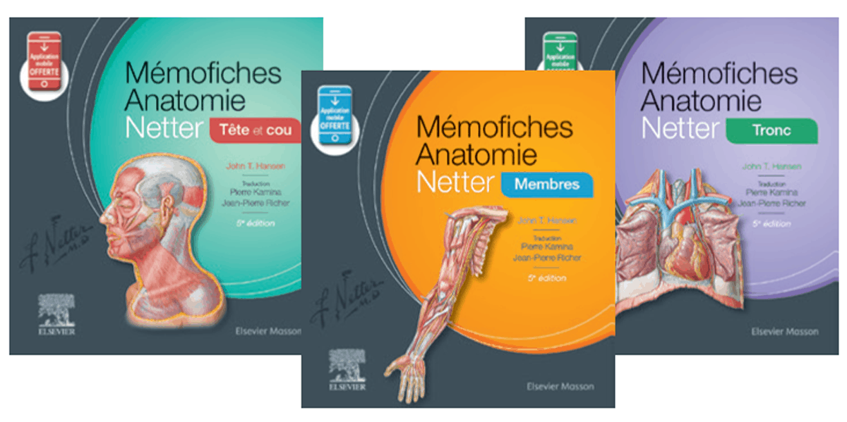 memofiches-anatomie-netter.png