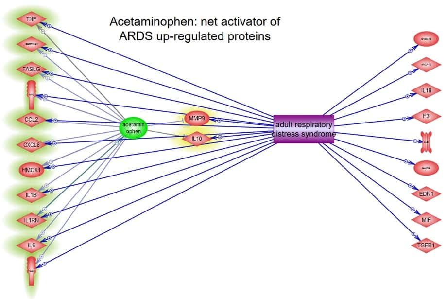 Visualization showing that the drug acetaminophen activates upregulated proteins