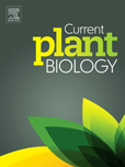 Current Plant Biology