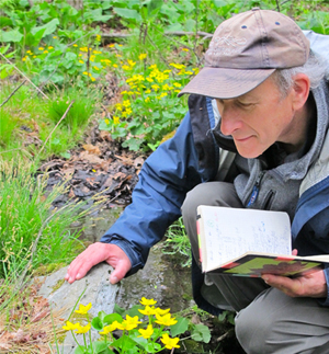 Richard Primack, PhD, does field work in Concord, Massachusetts.