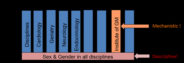 Gender is needed as a cross-sectional element in all disciplines. However, major scientific achievements can only be expected if the discipline develops its own scientific aims, hypotheses and methods, which can then be exported to other disciplines.