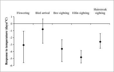 Birds are less responsive to temperature in their spring arrival times than are other spring phenomena in Massachusetts, such as plant flowering times and flight times of bees and two groups of butterflies, elfins and hairstreaks. Each point represents the mean response to temperature, while the error bars represent the minimum and maximum responses. (Source: Polgar et al. 2013. Biological Conservation 160: 25-31)