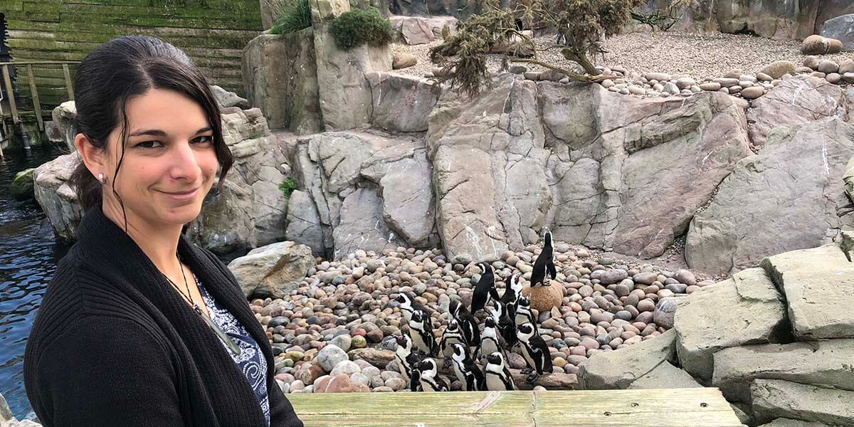 As a Lecturer in Conservation Science at the Bristol Zoological Society, Dr. Alison Cotton teaches undergraduate students from three universities and heads the zoo's South Africa Project, which aims to save the endangered African penguin.