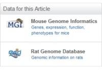Database Linking Tool