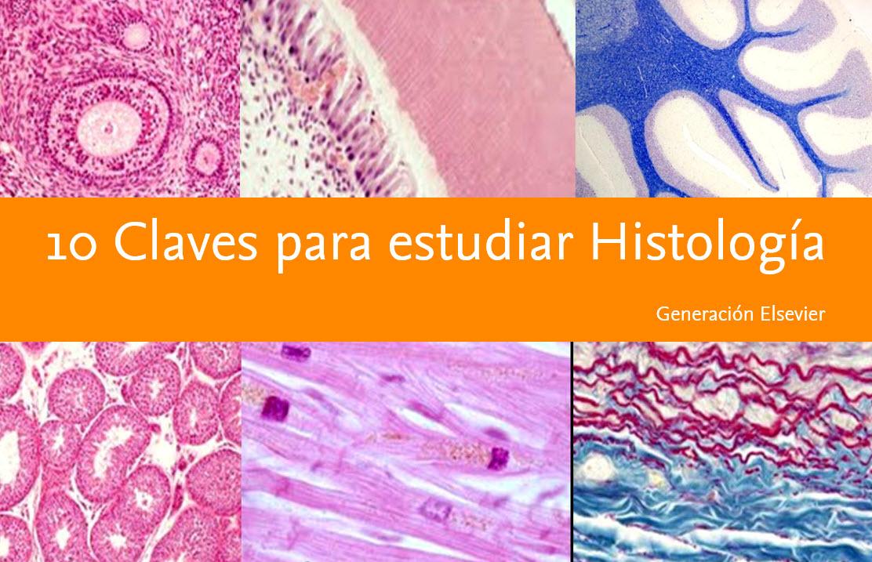 10 claves para el estudio de Histología- por los doctores ...