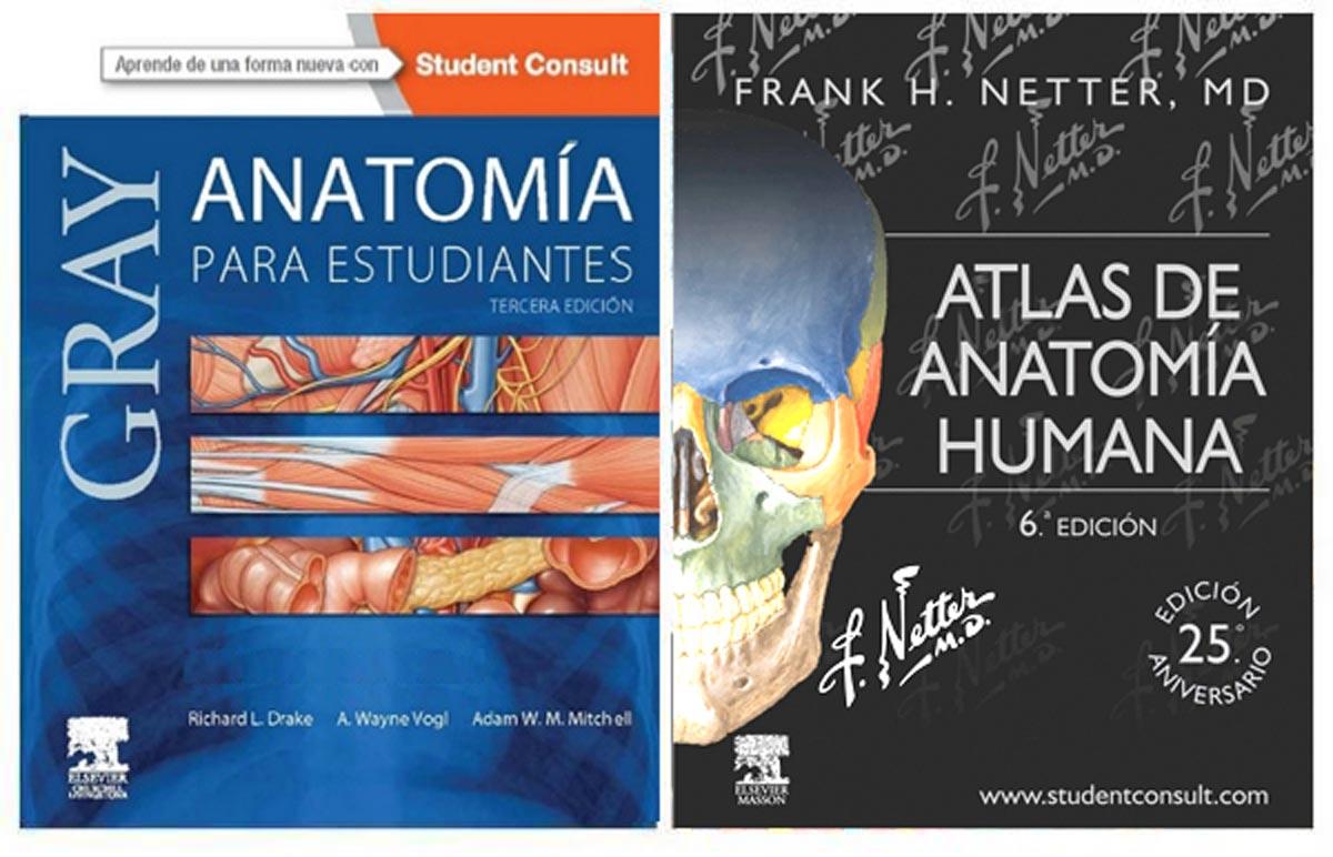 Gray-Netter-Anatomia.jpg