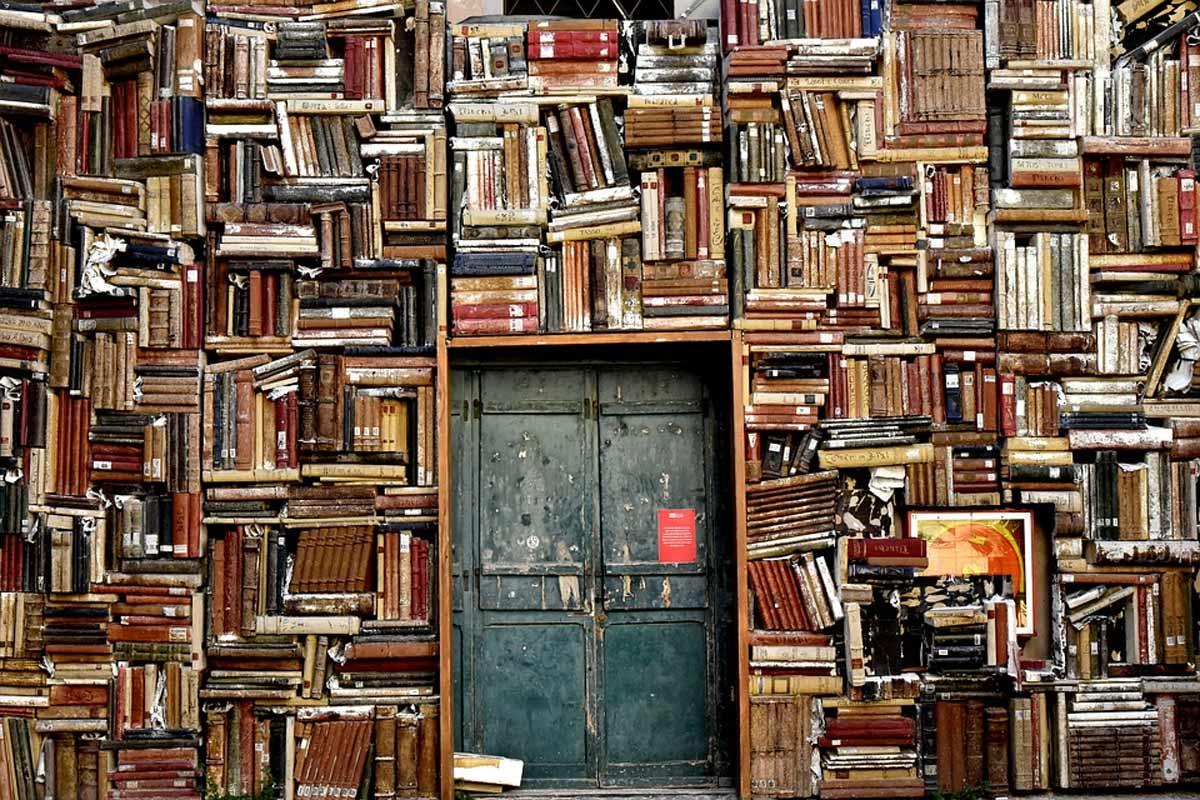 Catalogo-de-patologias-bibliotecarias-parte.jpg