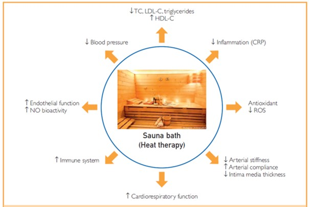 Pleiotropic effects of Finnish sauna baths