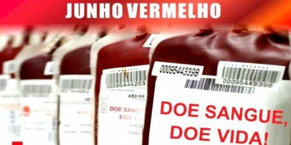 Dia Mundial do Doador de Sangue: prática que salva vidas