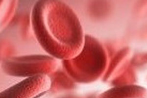 Nouveaux risques viraux en transfusion sanguine à l'horizon 2016