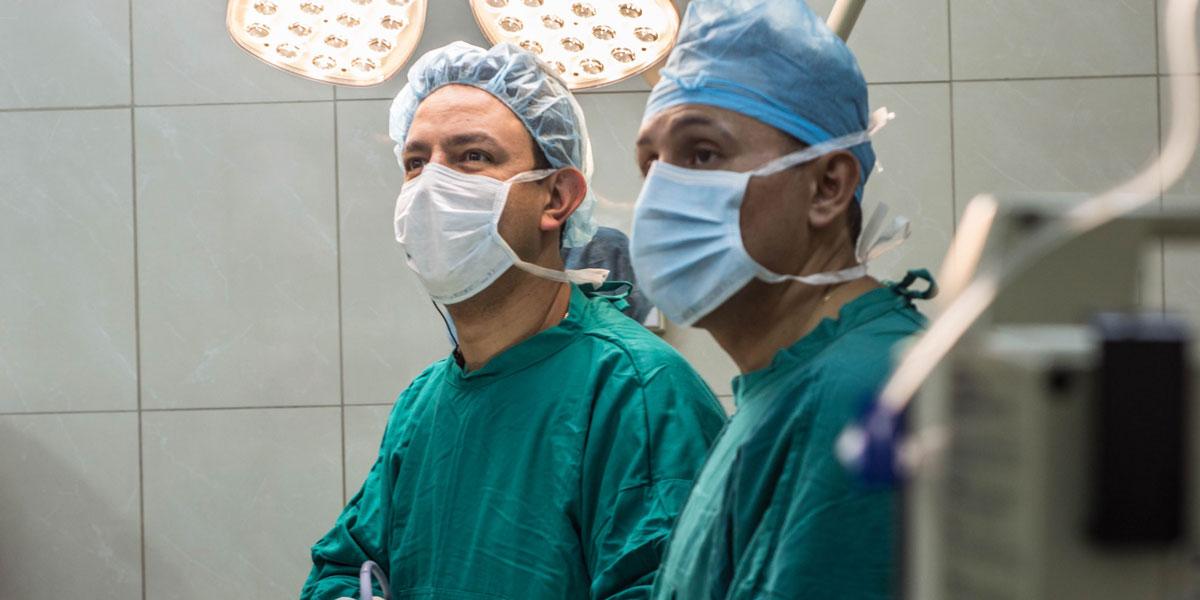 transplantation.jpg