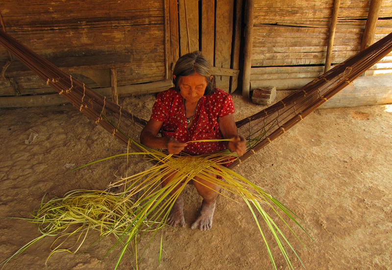 "Bae Chavez of the Chácobo community ""Alto Ivon"" is one of the few Chácobo women still practicing basket weaving using plant fibers and conserving this knowledge. (Photo by Narel Paniagua-Zambrana)."