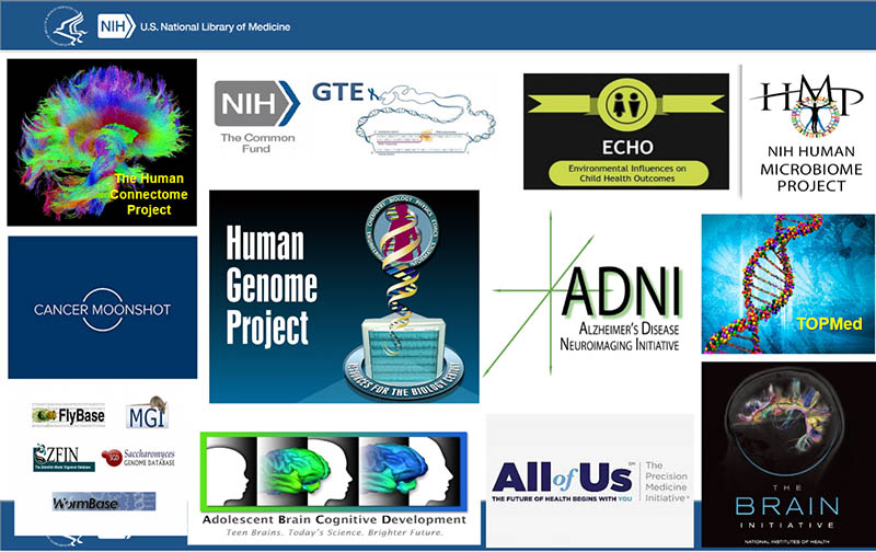 A sample of resources led by the NIH.