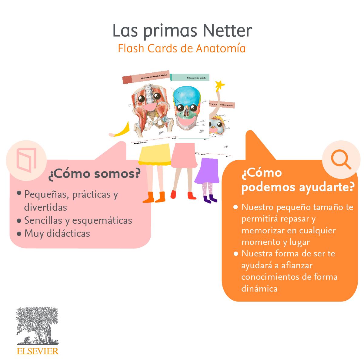Primas Netter
