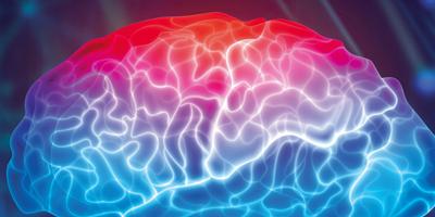 Référentiels des collèges : Neurologie
