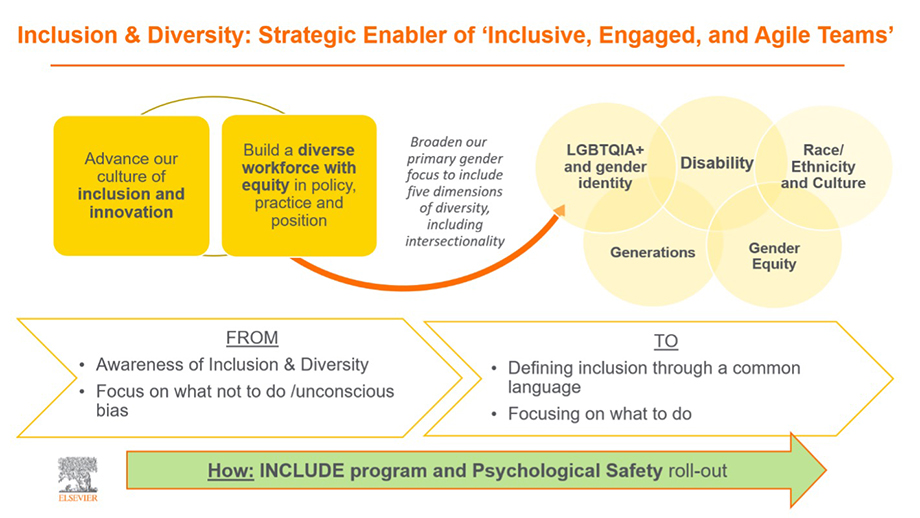 Inclusion Diversity Strategy