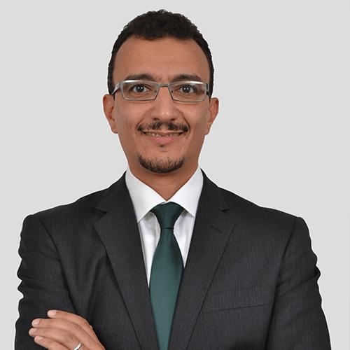 Wael Mansour photograph