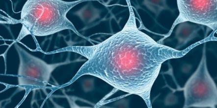 Antibody-drug conjugates - R&D Solutions   Elsevier