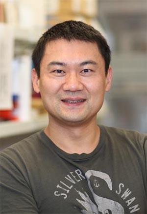 https://www.elsevier.com/__data/assets/image/0010/317863/Ting-Wang.jpg