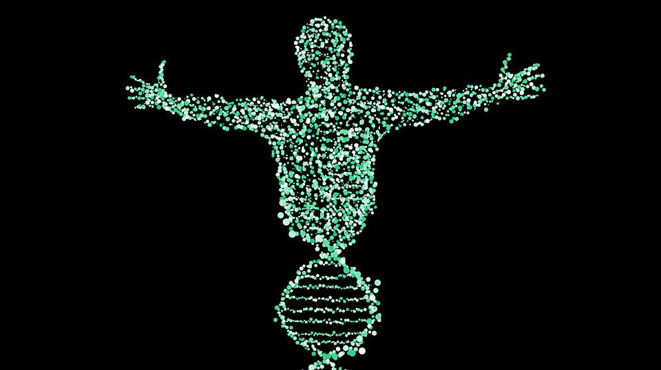 CRISPR-ADN.jpg