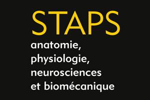 Généralités en anatomie pour les STAPS