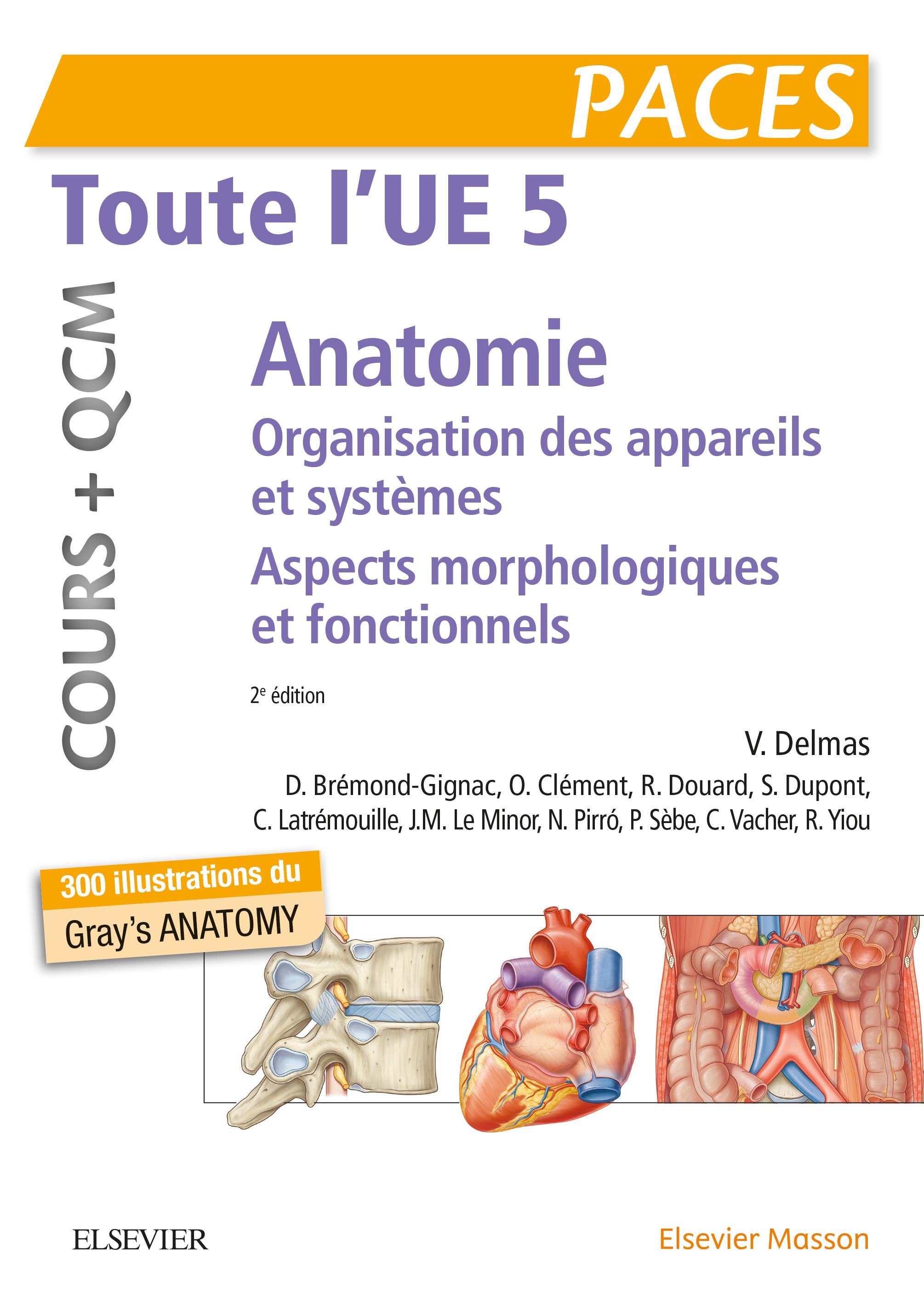 Toute l'UE 5 - Anatomie - Cours + QCM