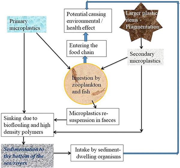 spc_most_cited Occurrence of microplastics and its pollution in the environment