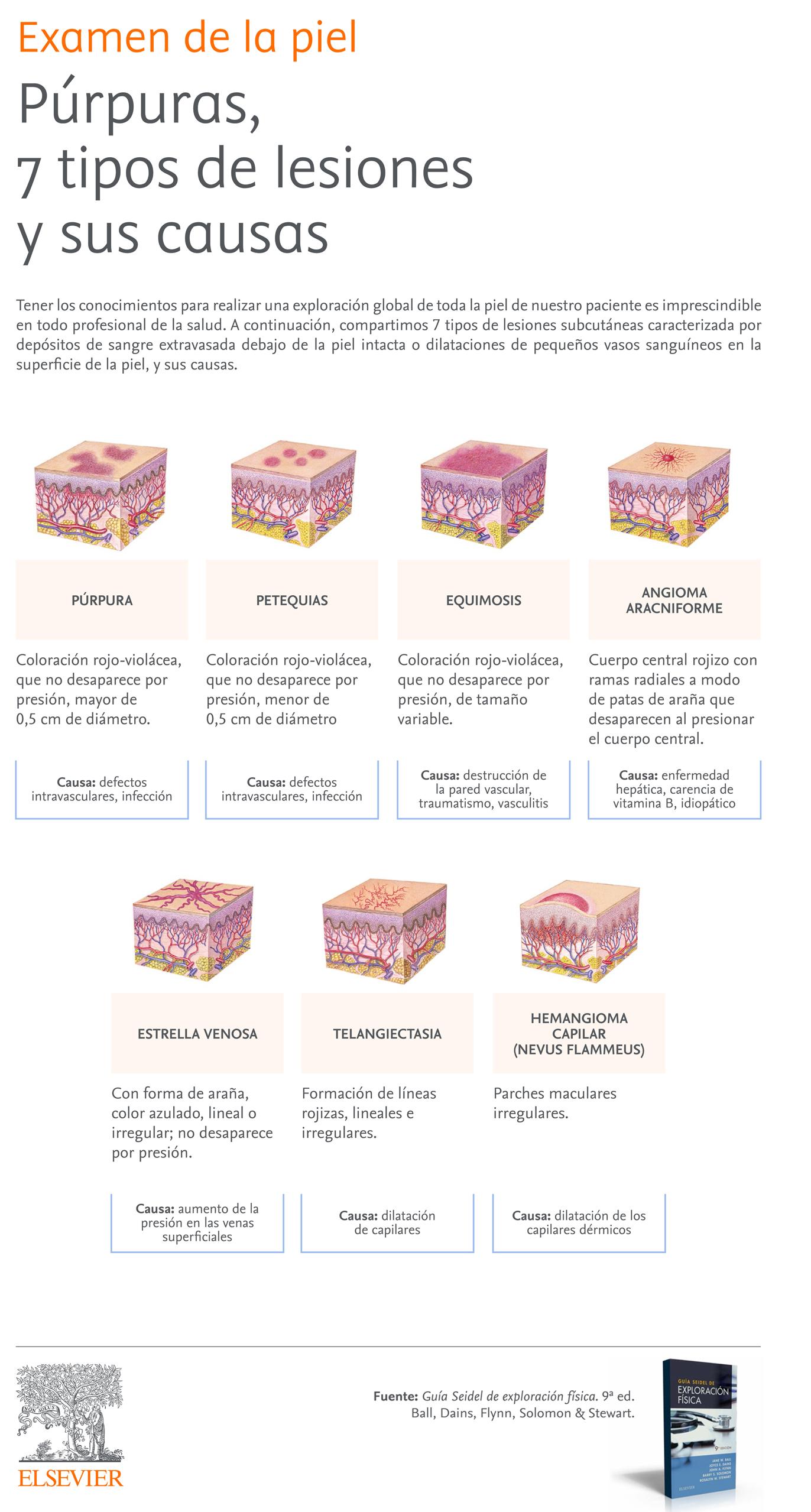 Exploración de la piel