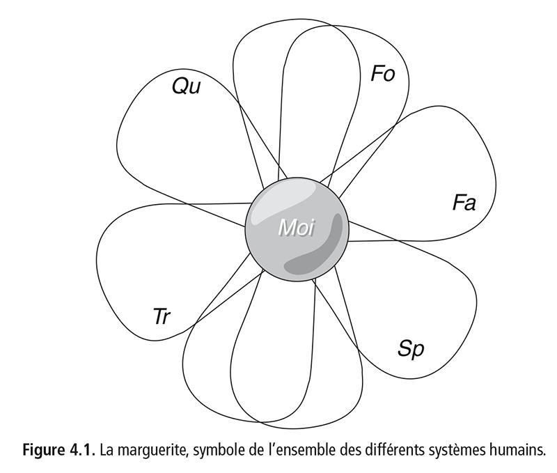 Figure 4.1 . La marguerite, symbole de l'ensemble des différents systèmes humains.