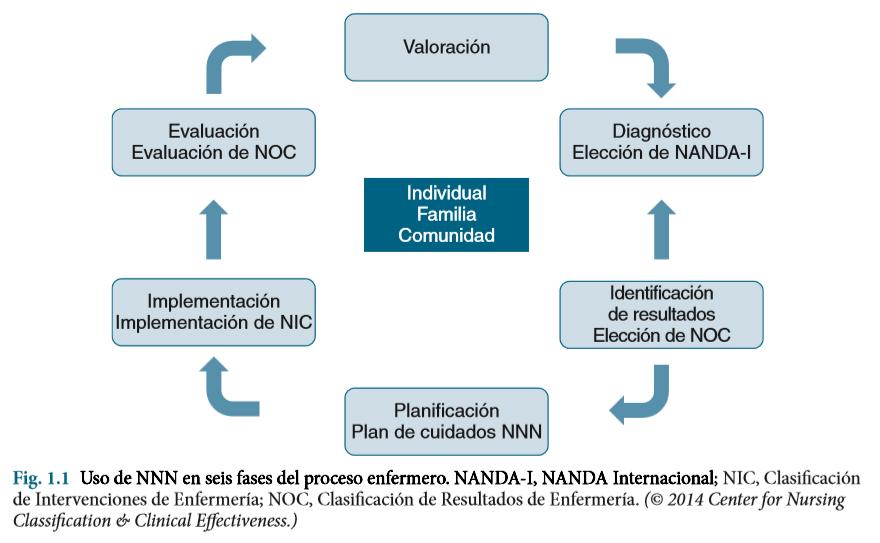 Uso seis fases NANDA
