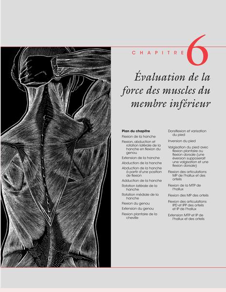 chapitre en accès libre le bilan musculaire
