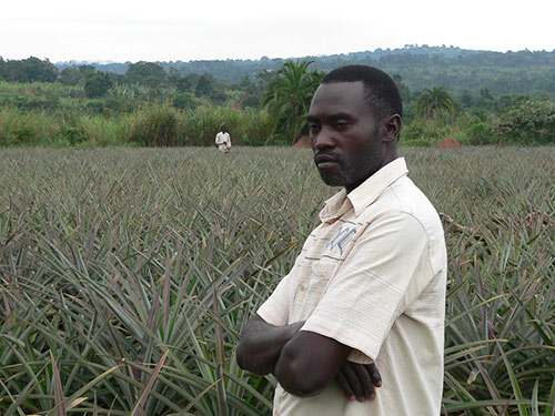 Sustainable Sanitation Design (SuSan Design), the first prize winner, supported this Ugandan farmer and his sustainably fertilized pineapple field.