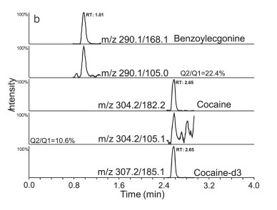 Sample of a chromatogram obtained from the analysis of patient sample containing benzoylecgonine and cocaine.